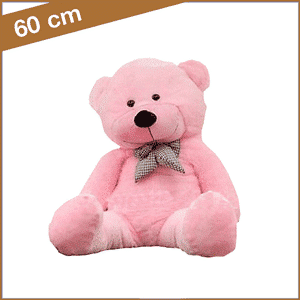 Grote roze knuffelbeer